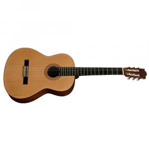 Husets Gitarr 100, Nybörjargitarr (Vänster)