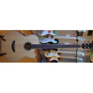 Fender CB-100 Akustisk Bas