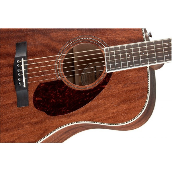 Fender Paramount PM-1 Deluxe Dreadnought. Natur