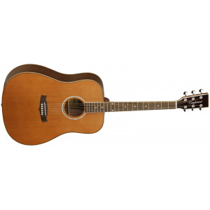 Tanglewood Evolution 28CSN